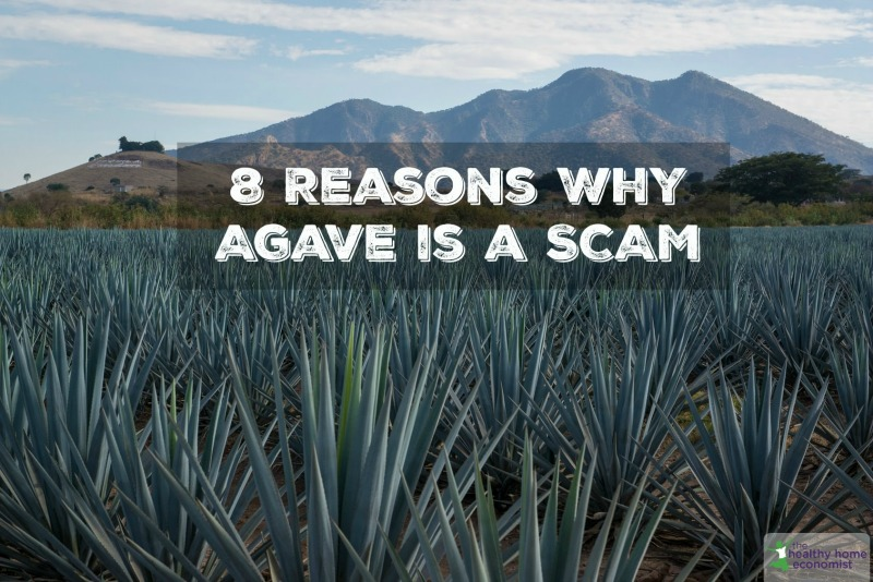 agave dangers