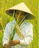 starving children in vietnam
