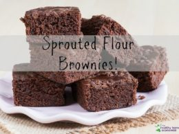 sprouted flour brownies
