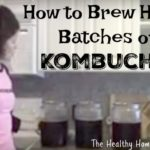Large Batch Advanced Kombucha Recipe (+ VIDEOS)