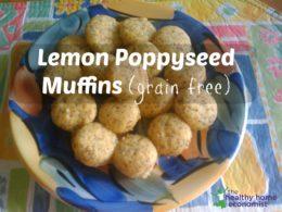 Lemon Poppyseed Muffins Recipe (Grain Free)