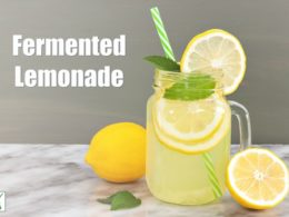 fermented lemonade in a glass