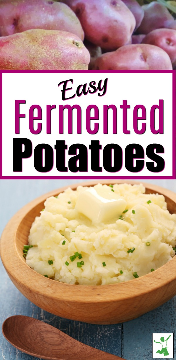 probiotic fermented potatoes