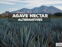 agave vs coconut sugar
