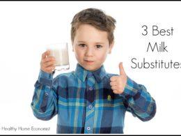 3 best milk substitutes