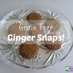 ginger snaps recipe grain free