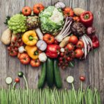 Why Plant Based Diets Cannot Maintain Health