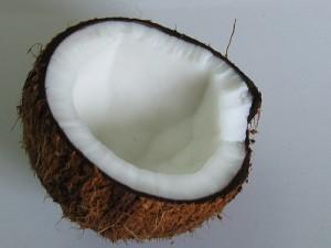 coconut_mini