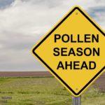 gmo pollination contamination
