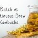 continuous brew kombucha vs batch method