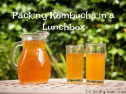 Traveling with Kombucha and Packing it Safely in a Lunchbox