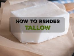 Rendering Beef Tallow the Easy and Traditional Way 2