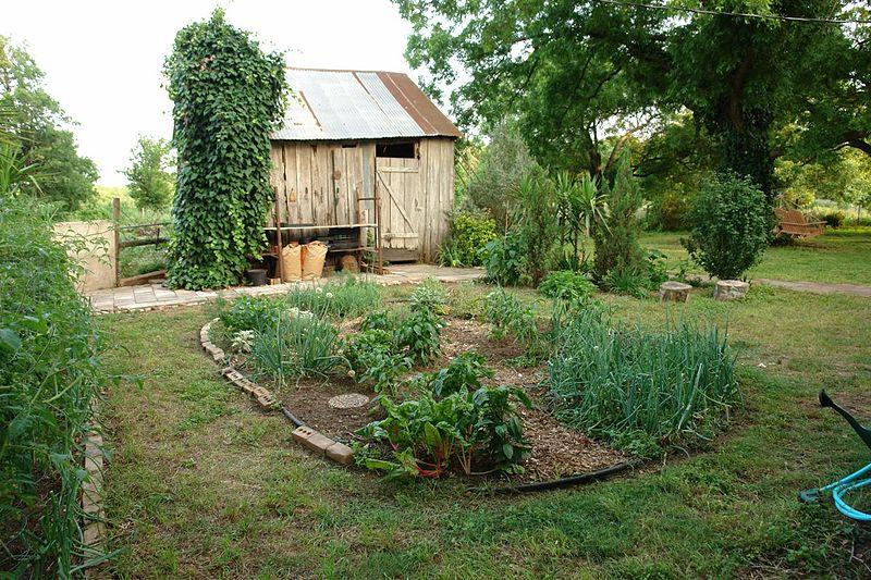 no monsanto garden