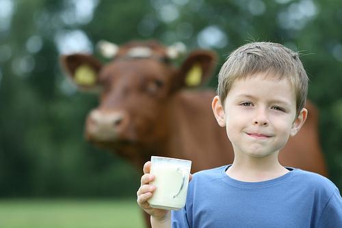 child drinking raw milk