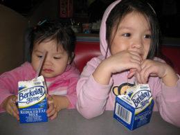 Study: Lowfat and Skim Milk Drinking Kids Are Fattest