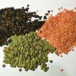 Soaking Lentils (recipe plus video)