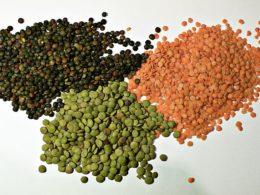 Soaking Lentils (recipe + video)