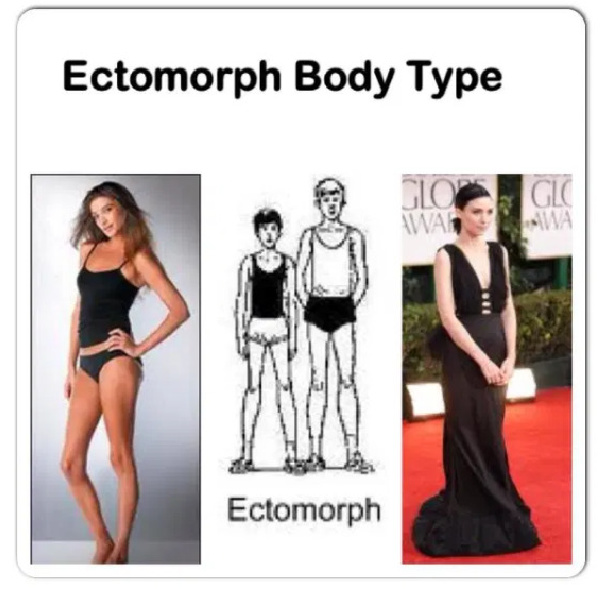 women with ectomorph body type
