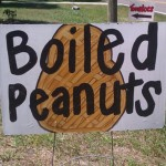 Boiled Peanuts Recipe (+ Video on How to Eat Them)