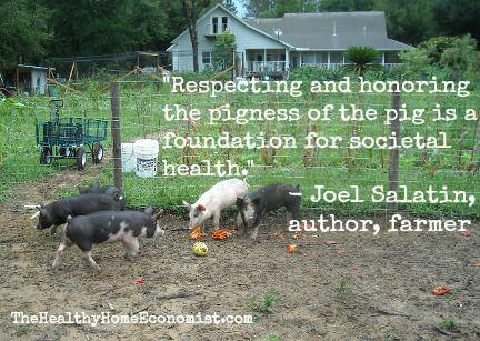 Joel Salatin on pastured pigs