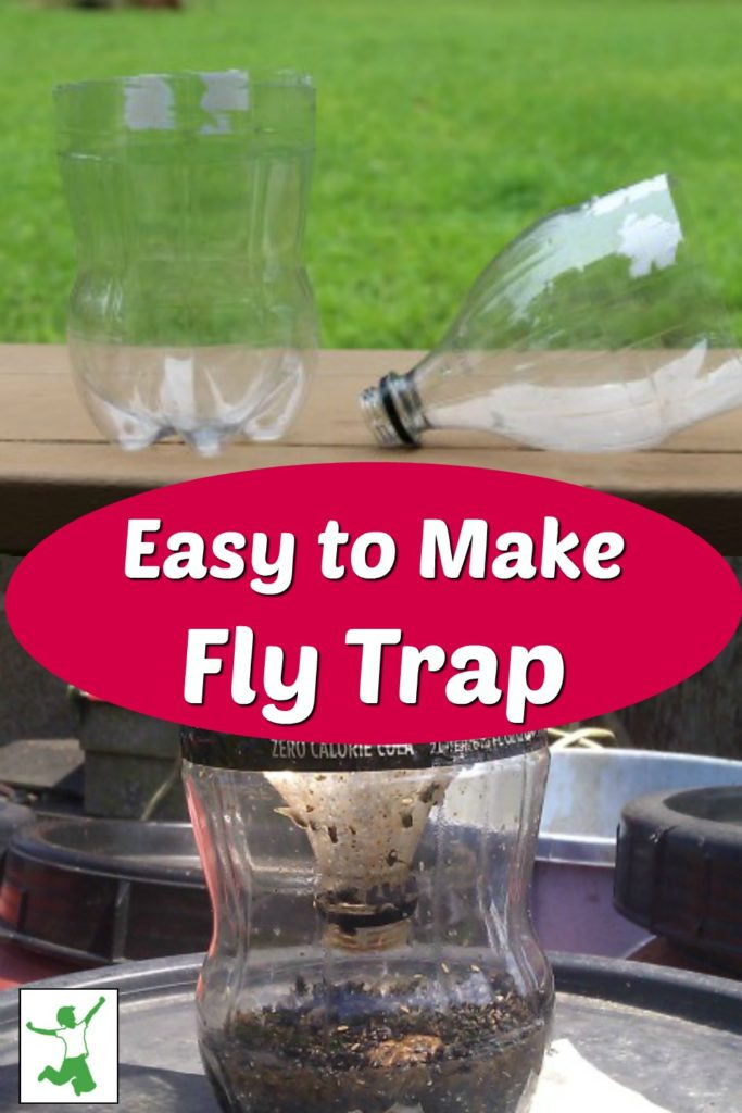 easy way to trap flies