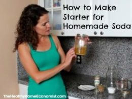 homemade soda starter