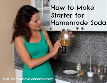 Starter for Homemade Soda