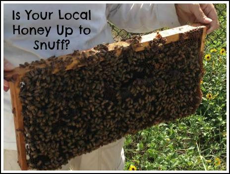 bees 2_mini (1)