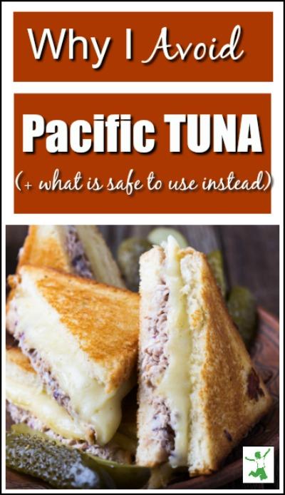 pacific tuna dangers
