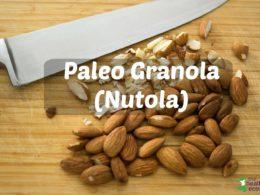 paleo grain free granola