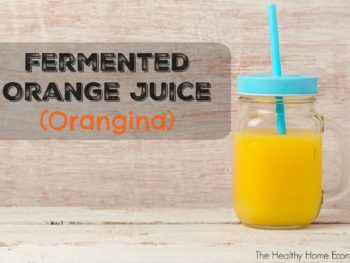 How to Make Orangina (Fermented Orange Juice) + Video 1