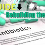 rebuild the gut post antibiotics