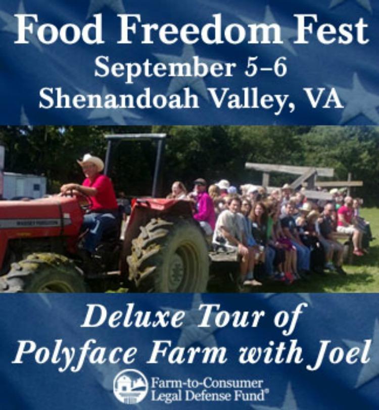 food freedom fest