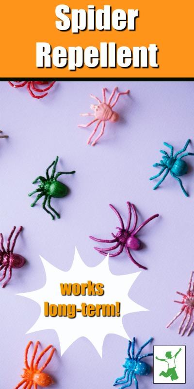 easy spider repellent