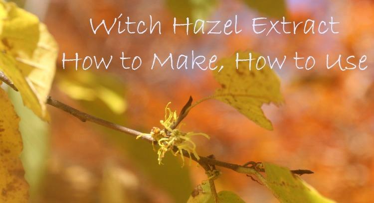 witch hazel extract uses