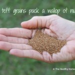 Tiny Teff Grains Deliver Big on Nutrition (+ teff porridge recipe)