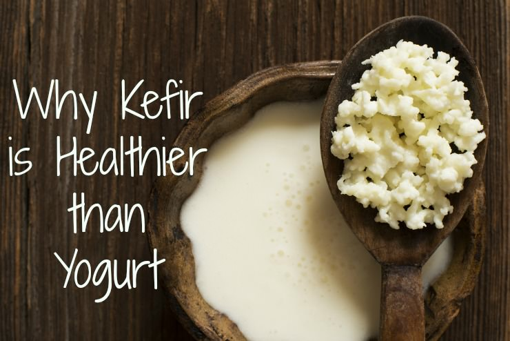kefir healthier than yogurt