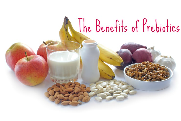 benefits of prebiotics