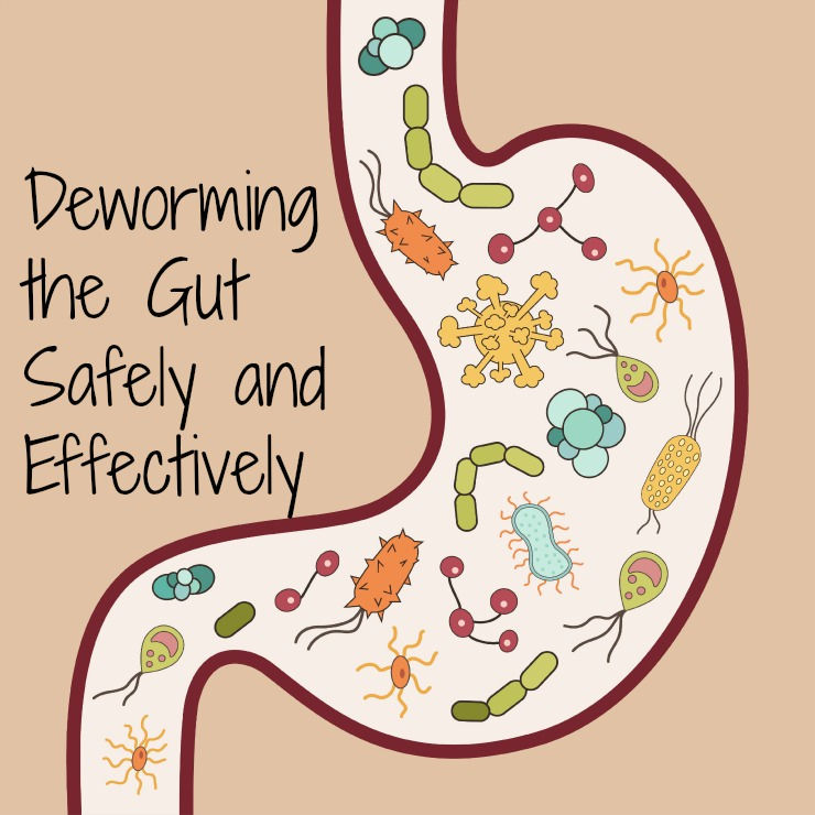 deworming the gut naturally