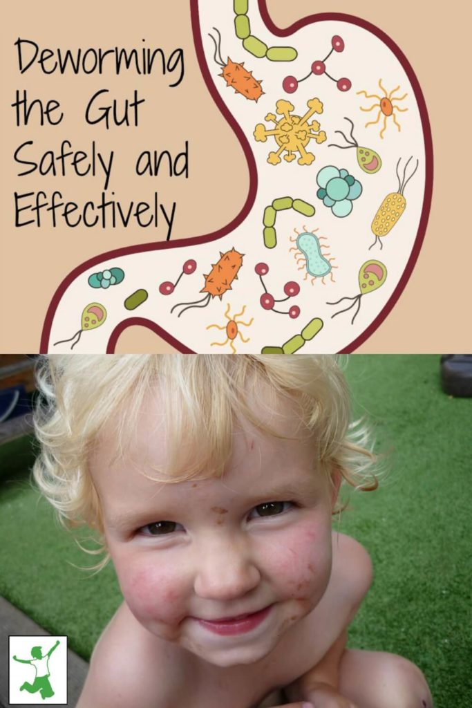 Deworming the Gut Safely and Effectively | The Healthy Home Economist