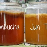 What is Jun? How to Make Jun Tea (Recipe + Video!)