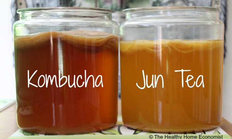 Jun Tea is Kombucha Champagne