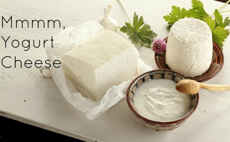 How to make yogurt cheese the healthy home economist yogurt cheese solutioingenieria Choice Image