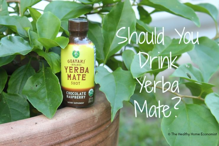 Yerba mate is suddenly everywhere from the check out aisle at whole