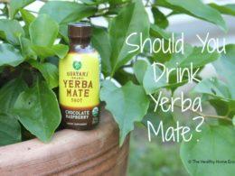Yerba Mate: When to Enjoy, When to Avoid (+ Latte Recipe) 1