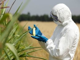 This Will Break Monsanto's Grip on the Food Supply
