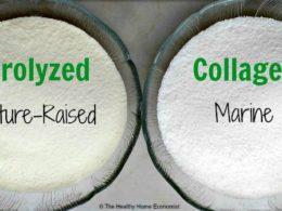The Lowdown on Hydrolyzed Collagen 1