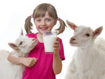 Raw Goat Milk