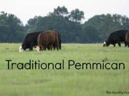 Pemmican: The First Power Bar (+ easy recipe) 2