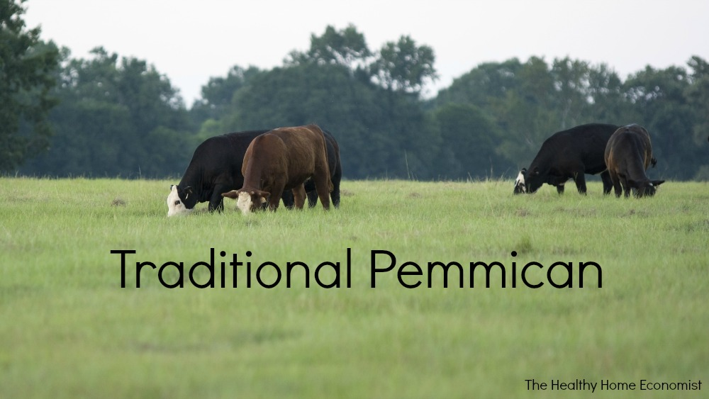 pemmican from grassfed cows